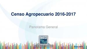 Censo Agropecuario