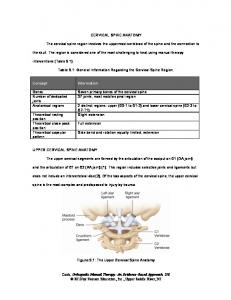 CERVICAL SPINE ANATOMY. The cervical spine region involves the uppermost vertebrae of the spine and the connection to