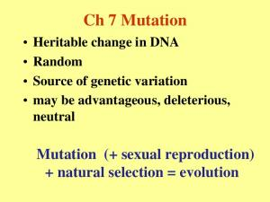 Ch 7 Mutation Heritable change in DNA Random Source of genetic variation may be advantageous, deleterious, neutral