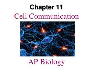 Chapter 11. Cell Communication. AP Biology