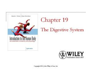 Chapter 19. The Digestive System. Copyright 2010, John Wiley & Sons, Inc