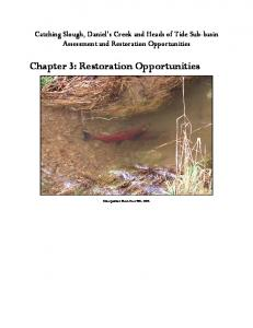 Chapter 3: Restoration Opportunities