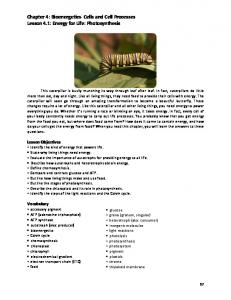 Chapter 4: Bioenergetics- Cells and Cell Processes Lesson 4.1: Energy for Life: Photosynthesis