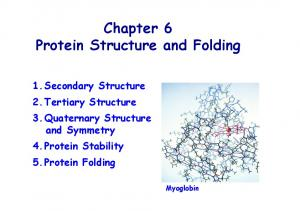 Chapter 6 Protein Structure and Folding