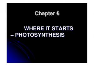 Chapter 6 WHERE IT STARTS PHOTOSYNTHESIS