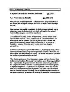 Chapter 7: Genes and Proteins Synthesis pg : From Gene to Protein pg