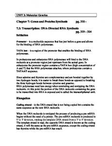 Chapter 7: Genes and Proteins Synthesis pg : Transcription: DNA-Directed RNA Synthesis pg Initiation