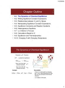 Chapter Outline. The Dynamics of Chemical Equilibrium