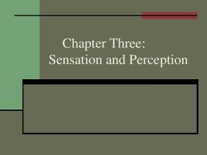Chapter Three: Sensation and Perception