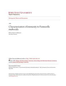 Characterization of immunity to Pasteurella multocida