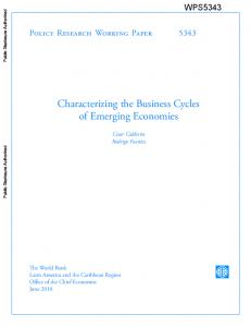Characterizing the Business Cycles of Emerging Economies