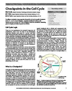 Checkpoints in the Cell Cycle