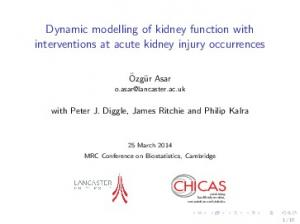 CHICAS. Dynamic modelling of kidney function with interventions at acute kidney injury occurrences