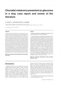 Choroidal melanoma presented as glaucoma in a dog: case report and review of the literature