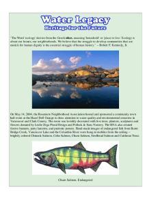 Chum Salmon, Endangered