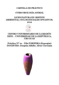 CICLOS INICIALES OPTATIVOS. 2012