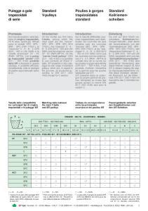 CINGHIE - BELTS - COURROIES - RIEMEN