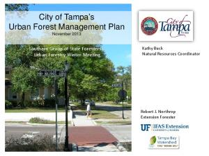 City of Tampa s Urban Forest Management Plan November 2013