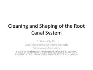 Cleaning and Shaping of the Root Canal System