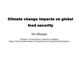 Climate change impacts on global food security