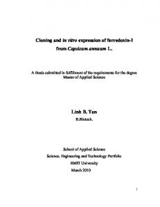Cloning and in vitro expression of ferredoxin-i from Capsicum annuum L. Linh B. Ton