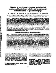 Cloning of porcine proglucagon and effect of commensal bacteria on relative gene expression in the intestine of gnotobiotic pigs