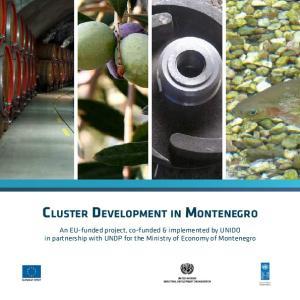 Cluster Development in Montenegro
