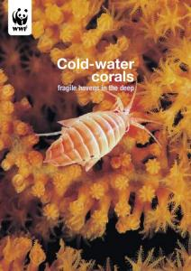 Cold-water corals. fragile havens in the deep