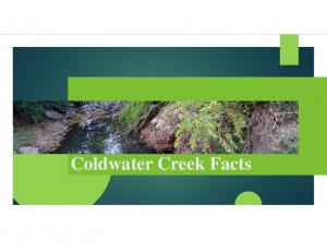 Coldwater Creek Facts