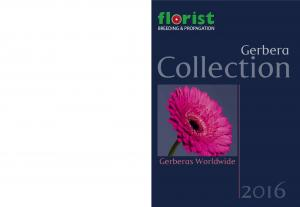 Collection. Gerbera. Gerberas Worldwide FLORIST HOLLAND B.V. FLORIST HOLLAND IS MEMBER OF THE: COMPANIES OF FLORIST HOLLAND ARE: