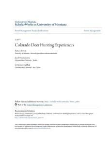 Colorado Deer Hunting Experiences