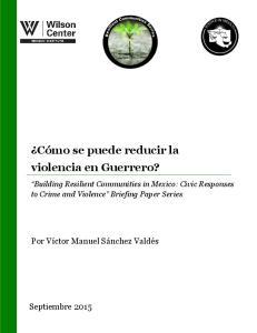 Cómo se puede reducir la violencia en Guerrero?