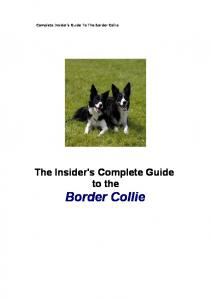 Complete Insider's Guide To The Border Collie. The Insider's Complete Guide to the Border Collie