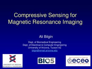 Compressive Sensing for Magnetic Resonance Imaging