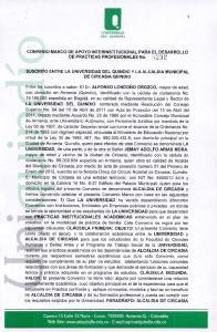 CON VENIO MARCO DE APOYO INTERINSTITUCIONAL PARA EL DESARROLLO DE PRACTICAS PROFESIONALES No. :232