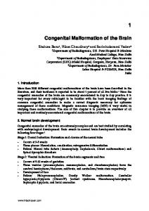 Congenital Malformation of the Brain