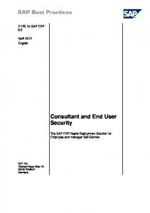 Consultant and End User Security