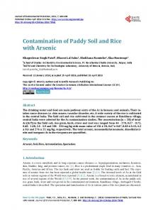 Contamination of Paddy Soil and Rice with Arsenic