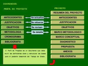 CONTENIDOS: PERFIL DE PROYECTO PROYECTO