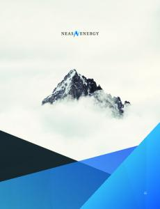 Contents. This is Neas Energy. European Energy Trading. Nordic Market. German Market. UK Market. Neas Direct