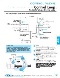 CONTROL VALVES Control Loop