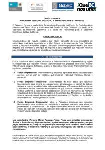 CONVOCATORIA PROGRAMA ESPECIAL DE APOYO A EMPRENDEDORES Y MIPYMES