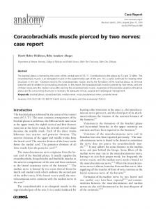 Coracobrachialis muscle pierced by two nerves: case report