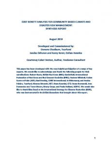 COST BENEFIT ANALYSIS FOR COMMUNITY BASED CLIMATE AND DISASTER RISK MANAGEMENT: SYNTHESIS REPORT. August 2010
