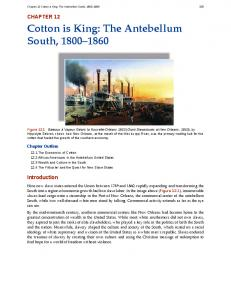 Cotton is King: The Antebellum South,