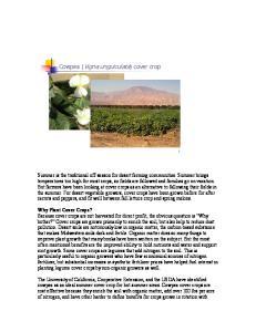 Cowpea (Vigna unguiculata) cover crop