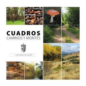 CUADROS CAMINOS Y MONTES AYUNTAMIENTO DE CUADROS