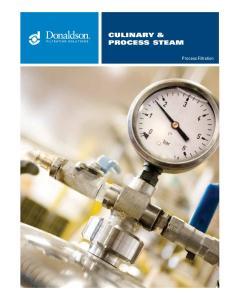 CULINARY & PROCESS STEAM. Process Filtration