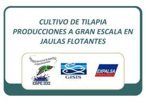 CULTIVO DE TILAPIA PRODUCCIONES A GRAN ESCALA EN JAULAS FLOTANTES