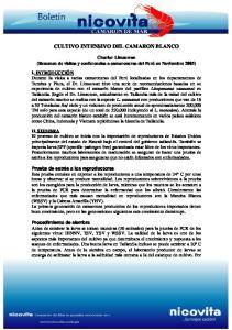 CULTIVO INTENSIVO DEL CAMARON BLANCO